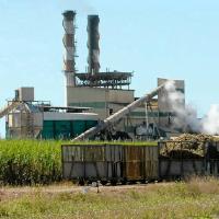australian sugar refinery