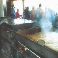 Panela processing