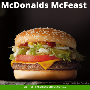 McDonalds McFeast Burger