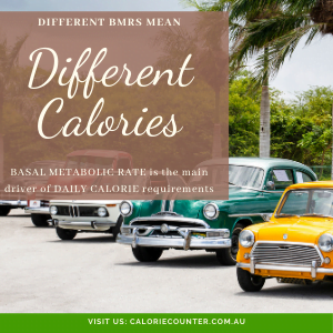 BMR determines Daily Calories