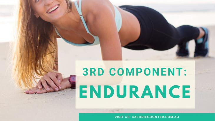 Endurance fitness component