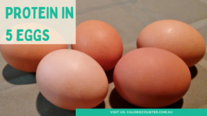How Much Protein Is In 5 Eggs