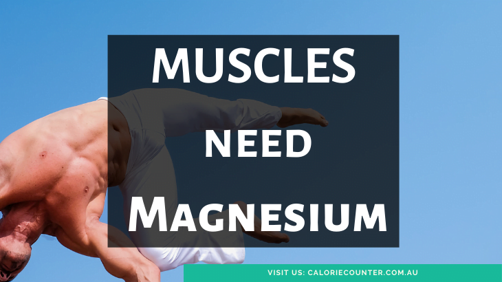 Muscles need magnesium